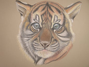 Tiger Pastels - Little Ones Sister by Stephanie L Carr