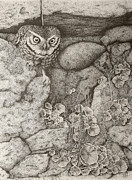 Old Wall Drawings Prints - Little owl Print by Paul Parsons