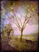 Benches Digital Art Posters - Little Pathways Poster by Tara Turner