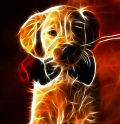 Canine Digital Art - Little Puppy in Love by Pamela Johnson