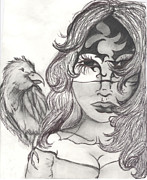 Seductive Drawings - Little Raven by Veronica Wiggins