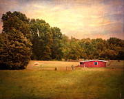 Tennessee Photos Posters - Little Red Barn Poster by Jai Johnson