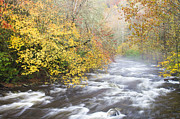 Little River Posters - Little River in the Smoky Mountains Poster by Bill Swindaman