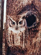 Owl Pyrography Metal Prints - Little Screech Metal Print by Susan Rice