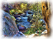 Colorado Stream Posters - Little Stream 2 Poster by Adam Vance