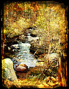 Colorado Stream Posters - Little Stream Poster by Adam Vance