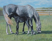 Mare Paintings - Little Thunder  by Anda Kett