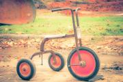 Tricycle Prints - Little Wheels Print by Toni Hopper