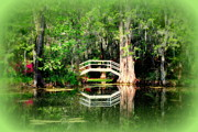 Water Scene Prints - Little White Bridge in Magnolia Gardens Charleston SC Print by Susanne Van Hulst