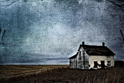 Rural Decay Prints Prints - Little White Home Print by Larysa Luciw