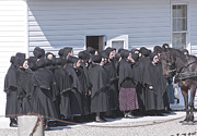 Mennonite Community Photos - Little Women by Lisa  DiFruscio
