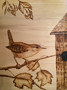 States Pyrography Posters - Little Wren Poster by Susan Rice