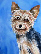 Dog Watercolor Framed Prints - Little Yorkie Framed Print by Cherilynn Wood