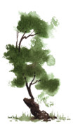 Illustration Painting Originals - Little Zen Tree 152 by Sean Seal
