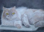 Cat Portraits Pastels Prints - Liu Print by Cybele Chaves