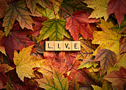 Forgive Prints - LIVE-Autumn Print by  Onyonet  Photo Studios