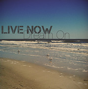 Nicole McInnes - Live Now Dream On