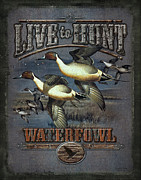Waterfowl Metal Prints - Live to Hunt Pintails Metal Print by JQ Licensing