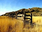 Fences Prints - Livery fence at dripping springs Print by Kurt Van Wagner