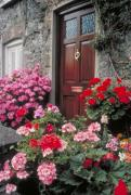 Charming Cottage Photos - Living in Ireland by Carl Purcell