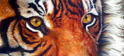 Tiger Pastels - Living Jewels by  Ann Jeffree