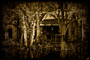 Bayou Digital Art - Living on the Bayou by Chris Lord