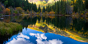 Colorado Prints - Lizard Lake Reflections Print by Steve Stuller