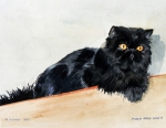 Persian Cat Paintings - Lizzy by Eileen Hale