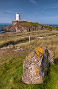 Evans Posters - Llanddwyn Rock Poster by Adrian Evans