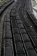 Railroads Photo Metal Prints - Loaded Coal Cars Sit In The Rail Yards Metal Print by Everett