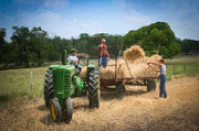 At Work Prints - Loading the wheat    3204 Print by Fritz Ozuna