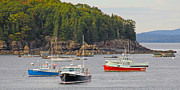 Bar  Harbor Framed Prints - Lobster Boats in Bar Harbor Framed Print by Jack Schultz
