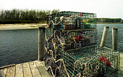Lobster Pots Framed Prints - Lobster Pots Framed Print by Skip Willits
