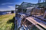 Lobster Traps Framed Prints - Lobster traps in the sun Framed Print by Sven Brogren