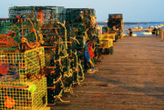Lobster Traps Framed Prints - Lobster Traps on Pier Framed Print by Thomas R Fletcher