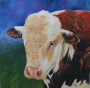 Poll Originals - Local Hereford Bull by Leonie Bell