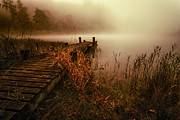 Reeds Photos - Loch Ard early morning mist by John Farnan