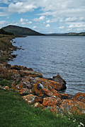 Loch Fleet Metal Prints - Loch Fleet Metal Print by Steve Watson