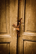 Entrance Door Framed Prints - Locked Framed Print by Gabriela Insuratelu