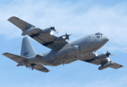 Davis Photos - Lockheed EC-130H Compass Call Hercules 73-1584 Davis-Monthan AFB Arizona March 8 2011 by Brian Lockett