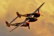 Motorsports Originals - Lockheed P-38 Lightning 2011 Chino Air Show by Gus McCrea
