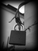 Padlock Digital Art Originals - Locking Love by Haley Evans
