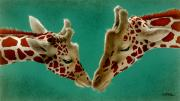 Giraffe Posters - Lofty lovers... Poster by Will Bullas
