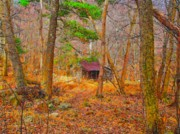 Log Cabin Photos - Log Cabin in the Deep Woods by E Robert Dee