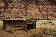 Desert Southwest Prints - Log Cabin in the Desert Print by Dave Dilli
