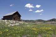Log Cabins Photo Posters - Log Cabin On The High Country Ranch Poster by Rich Reid