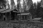 Log Cabin Art Prints - Log Cabins-Faded Dreams Print by Joseph Noonan