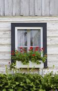 Geranium Photos - Log Home And Flower Box In The Window by David Chapman