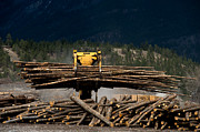 Grapple Framed Prints - Logging Machine Framed Print by Leslie Philipp
