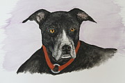 Best Friend Originals - Lokey watercolor by Ralph Hecht